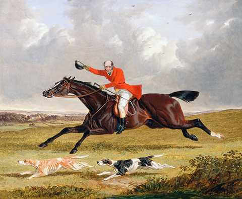 Foxhunting  Encouraging Hounds
