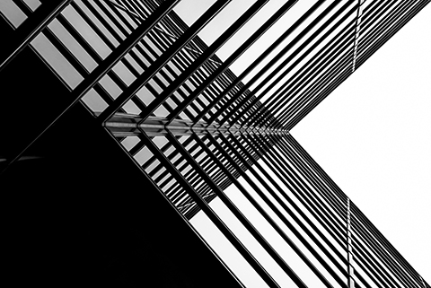 Lineas arquitectonicas