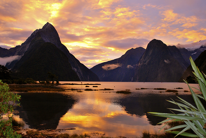 Milford Sound III