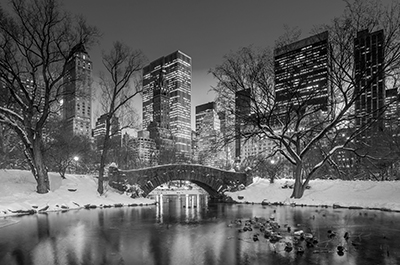 Puente Central Park ByN
