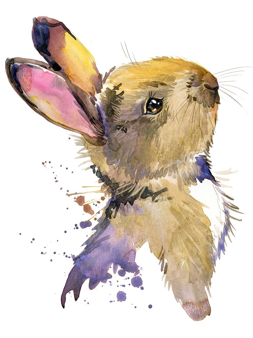 Conejo en acuarela