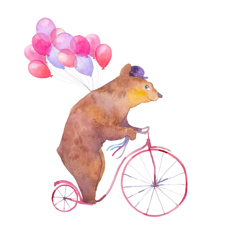 Oso pedaleando